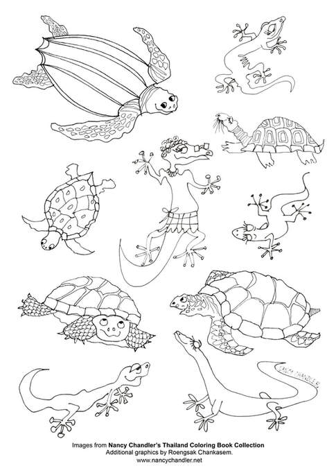 Nancy\'s Lizards & Turtles Free Coloring Download